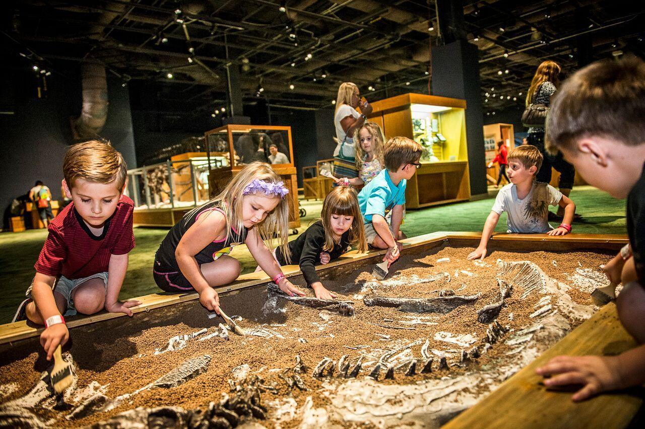 Orlando-Science-Center-DinoDigs.jpg